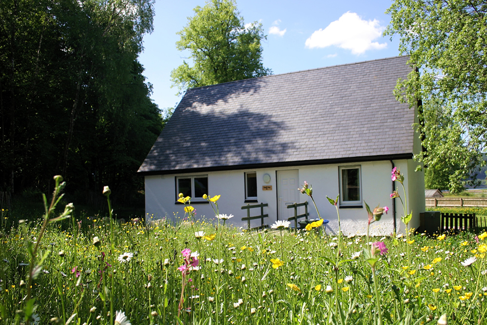 Bramble Cottage Self catering Strontian Ardnamurchan Scotland