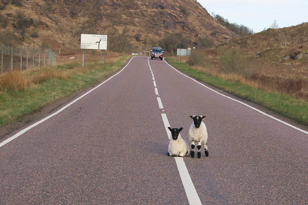 Roadblock on route to Strontian Ardnamurchan Scotland